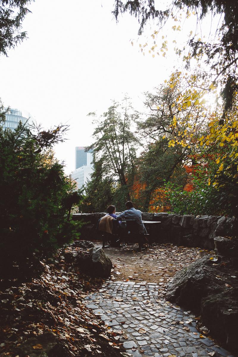 Palmen-Garten-20